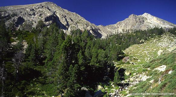 El desenvolupament del Pirineu